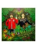 【CD+DVD】『自由蝶』 RYO the SKYWALKER & 卍LINE